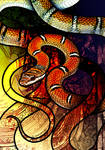Twin Barred Tree Snake by Culpeo-Fox
