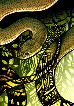 Rice Paddy Snake