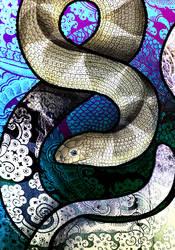 Spine-Bellied Sea Snake