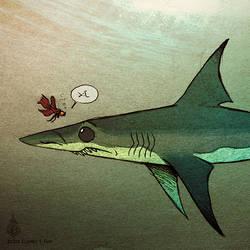 I'm A Betta Shark Than You