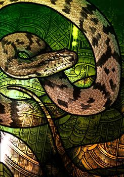 Dog-Faced Water Snake
