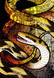 Beauty Rat Snake by Culpeo-Fox