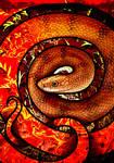 Golden Kukri Snake