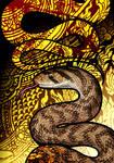 Cantor's Kukri Snake