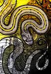 Striped Kukri Snake