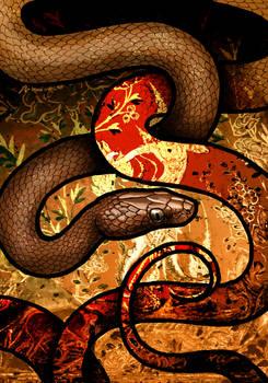 Brown Wolf Snake
