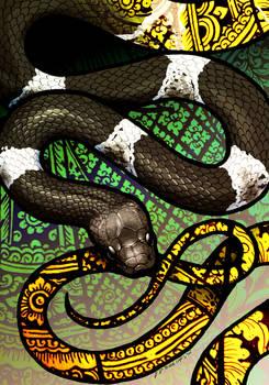 Butler's Wolf Snake