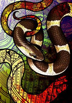 Blanfords Bridle Snake