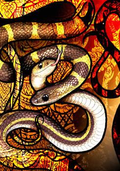 Malayan Bridle Snake