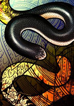 White-Bellied Blind Snake