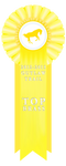 TOP BRASS 2012 -2013 by WesternSpice