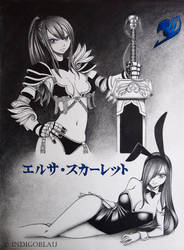 Fairy Tail: Erza Scarlet