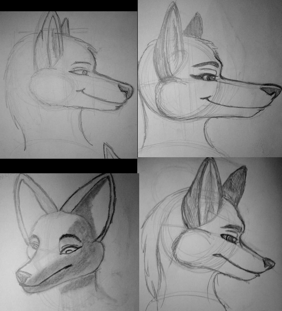 OC anthro head sketches 2 by Dr-Pen