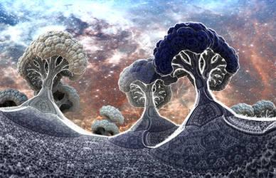 Broccoli Planet in Winter