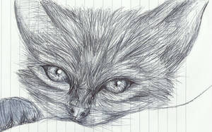 Kitty on lined paper by kingforaday98