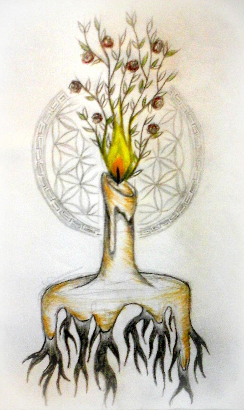 Illumination, Revelation, Life by not-important-at-all