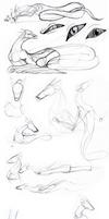 Amuse Dragon Form study