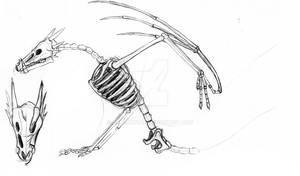 Skeleton Amuse