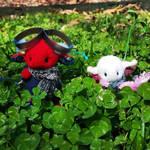In a field of clovers