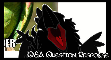 Between chapter Q and A: Question #1