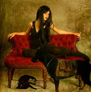 Mistress Noir's Pets