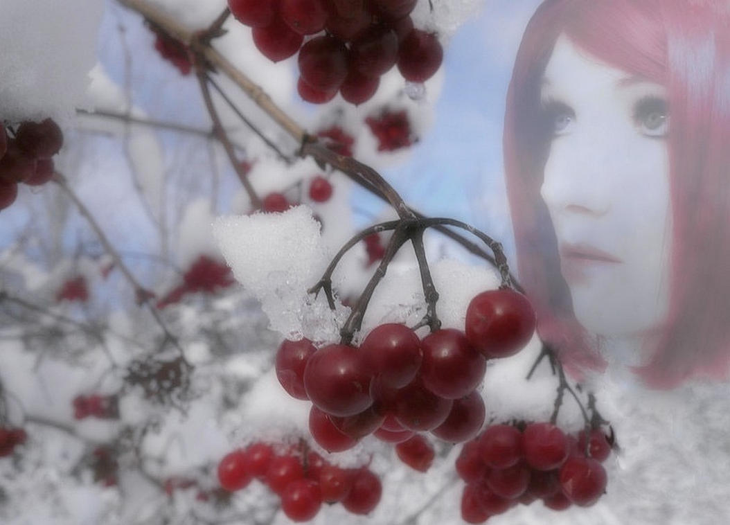 Life Is Not A Bowl Of Cherries by VisualPoetress