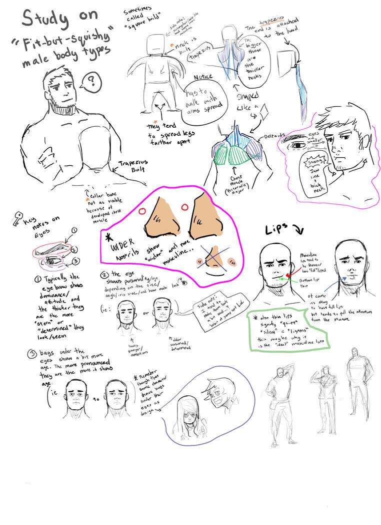 Study Malefbs by KindCoffee
