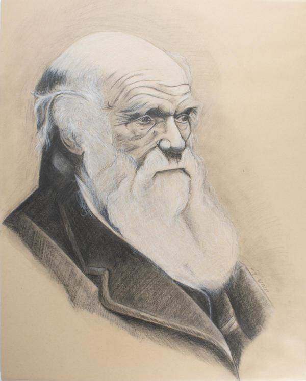 Charles Darwin  by Roman-Ballista