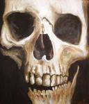 Skullstudy2