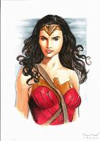 Wonder Woman - Gal Gadot. by marcel815
