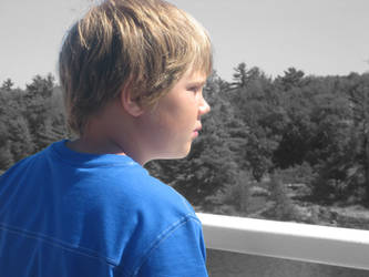 Blue Boy by advancedflea