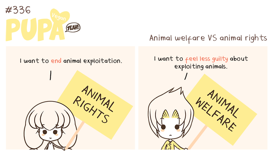 #336: Animal rights VS animal welfare by Pupaveg
