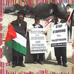 wat the real jews need??