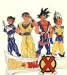 Dragonball X