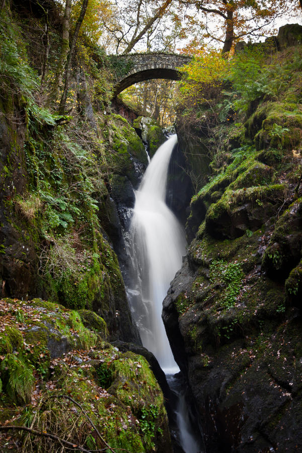 Aira Force II by SkankinMike