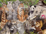 Conference of Animals