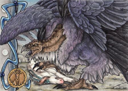 MAoI - blackheaded Harpy by BloodhoundOmega