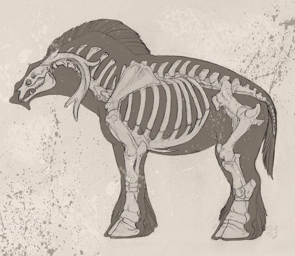 Nopey Skeleton by BloodhoundOmega