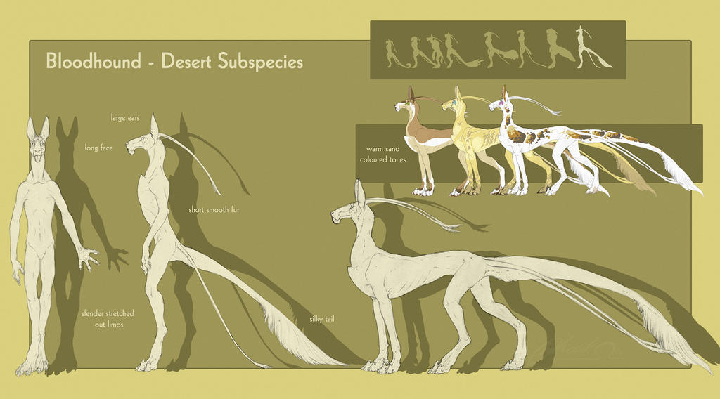 Bloodhound - Desert Subspecies by BloodhoundOmega