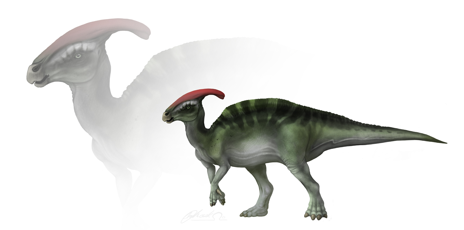Parasaurolophus walerki, male by BloodhoundOmega