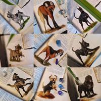 Animal Companions of Aventuria (Dogs) by BloodhoundOmega