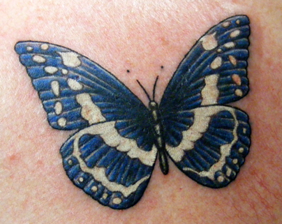 David's Butterfly: chest