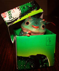 Pixie in the box by IgorSan