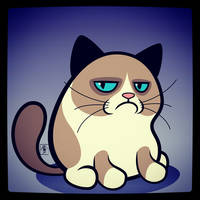 Grumpy Cat by IgorSan