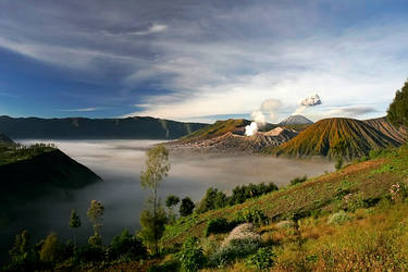 Bromo's View by vids