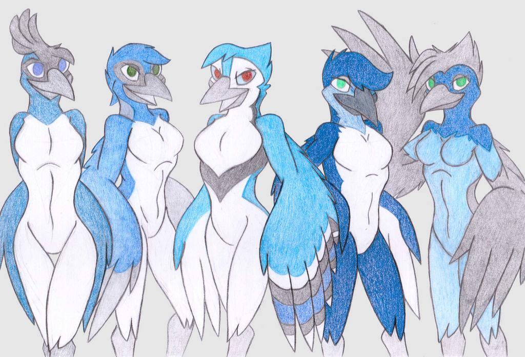 Cobalt Corvids