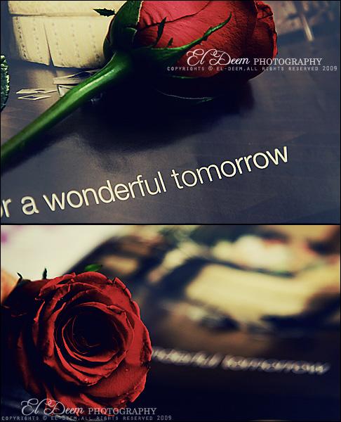waiting 4 a wonderful tomorrow by 3in-uae