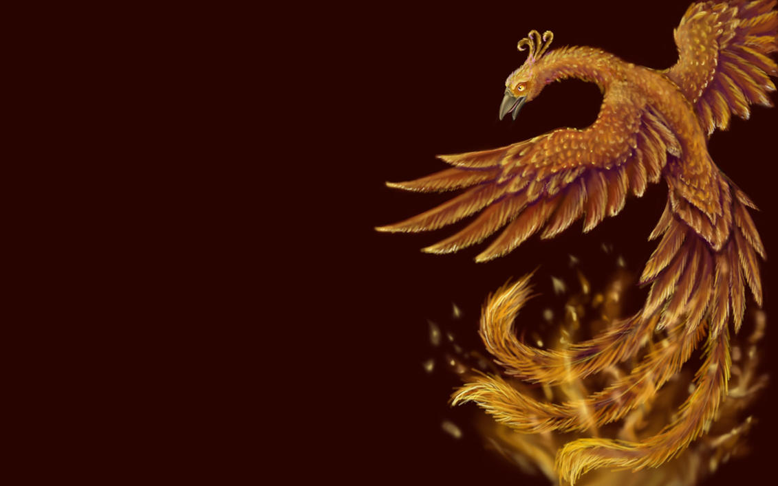 Phoenix Full HD Wallpaper and Background | 2560x1600 | ID:104284