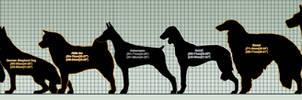 Ginga Breed Size Chart WIP