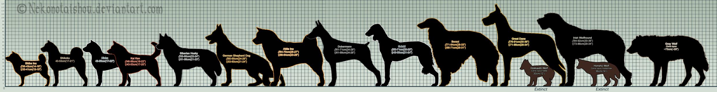 Ginga Breed Size Chart WIP by nekonotaishou on DeviantArt